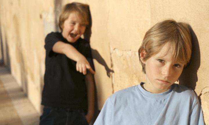 intimidare psiholog copii cluj